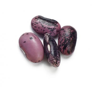 recipe: runner beans seeds [20]