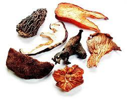 European Blend Mushrooms, Chanterelle, Porcini, Lobster, Black Trumpet, Sliced Shiitake, Morel, Boletes